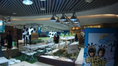 Photo of K11 urban farming. Orchards in shopping centers