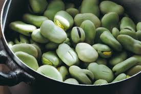 Photo of 5 Most Famous Types and Varieties of Broad Beans