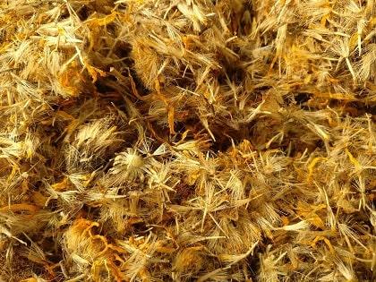 dried arnica leaves