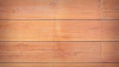 Photo of Wood Guide: Types, Uses and Examples