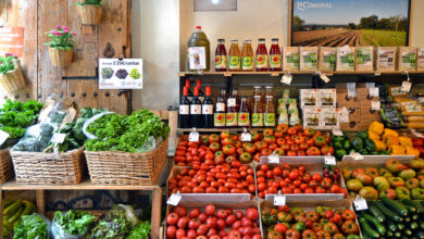 Photo of Markets to buy organic products in Catalonia