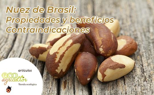 Brazil nuts properties