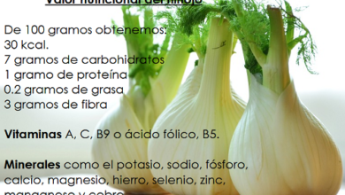 Photo of Fennel: rich in antioxidants, it helps our liver and fights anemia