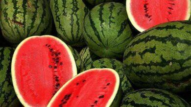 Photo of Watermelon seeds